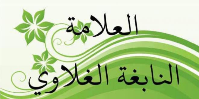العلامة النابغة الغلاوي / تاريخ موريتانيا الإيجابي